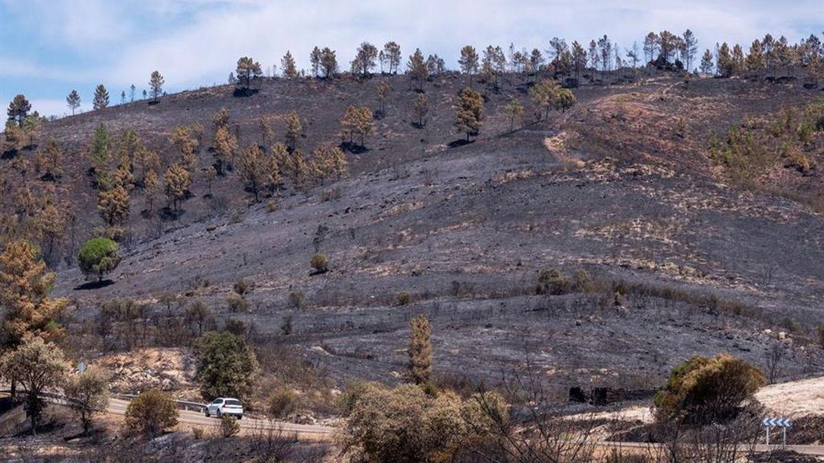 El incendio en Almonaster  finalmente extinguido después de 11 días de lucha contra las llamas