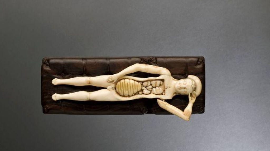 FIigura anatómica de marfil, Alemania 1601