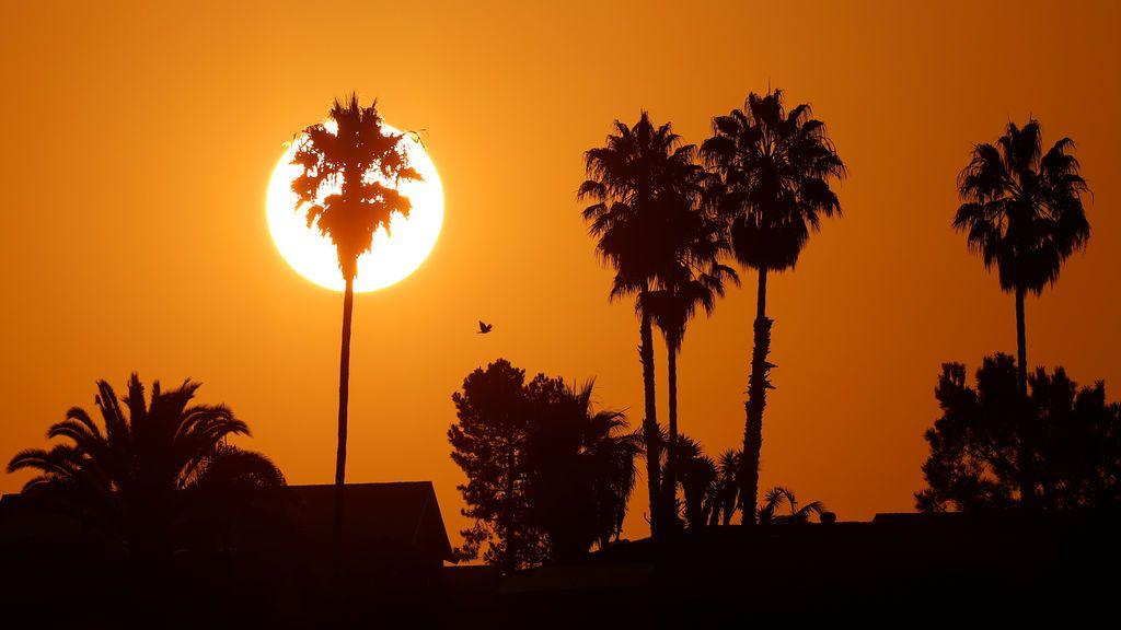 Agosto de 2020 ha sido el cuarto más caluroso registrado en la Tierra