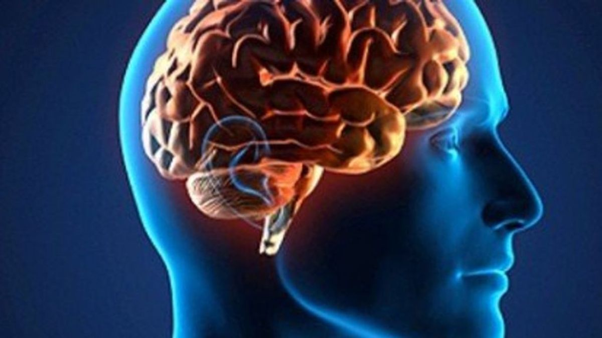 El coronavirus ataca al cerebro: puede invadir las células y provocar delirio y confusión