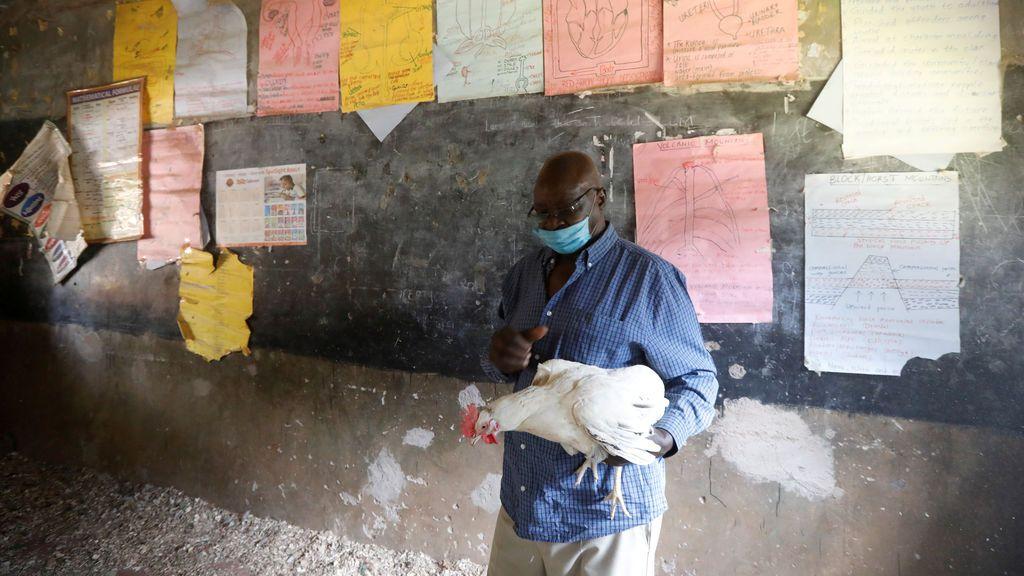 James Kung'u, director una una escuela keniata convertida en criadero de pollos