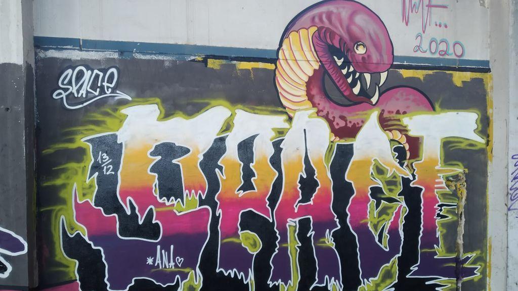 Otro grafiti investigado por el agente