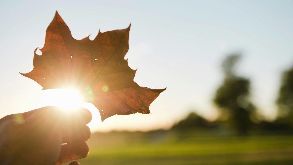 Equinoccio de otoño: el día y la hora exactas del cambio de estación