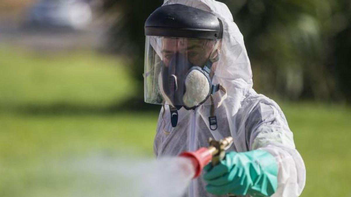 Alcalá de los Gazules (Cádiz) registra un caso de virus del Nilo