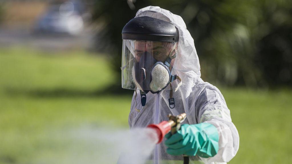 Nuevo caso de virus del Nilo en Alcalá de los Gazules, en Cádiz