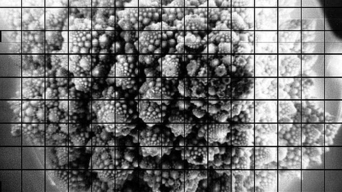 Científicos toman las fotos más grandes conseguidas hasta ahora en una sola toma