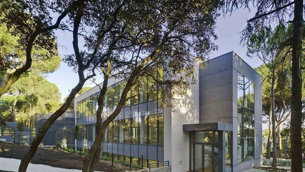 En el Liceo Europeo estudiaron los hijos de Ana Duato y José Coronado.