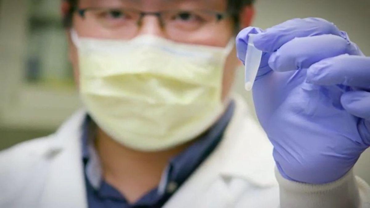 Hallan una molécula capaz de neutralizar, en modelos animales, al coronavirus