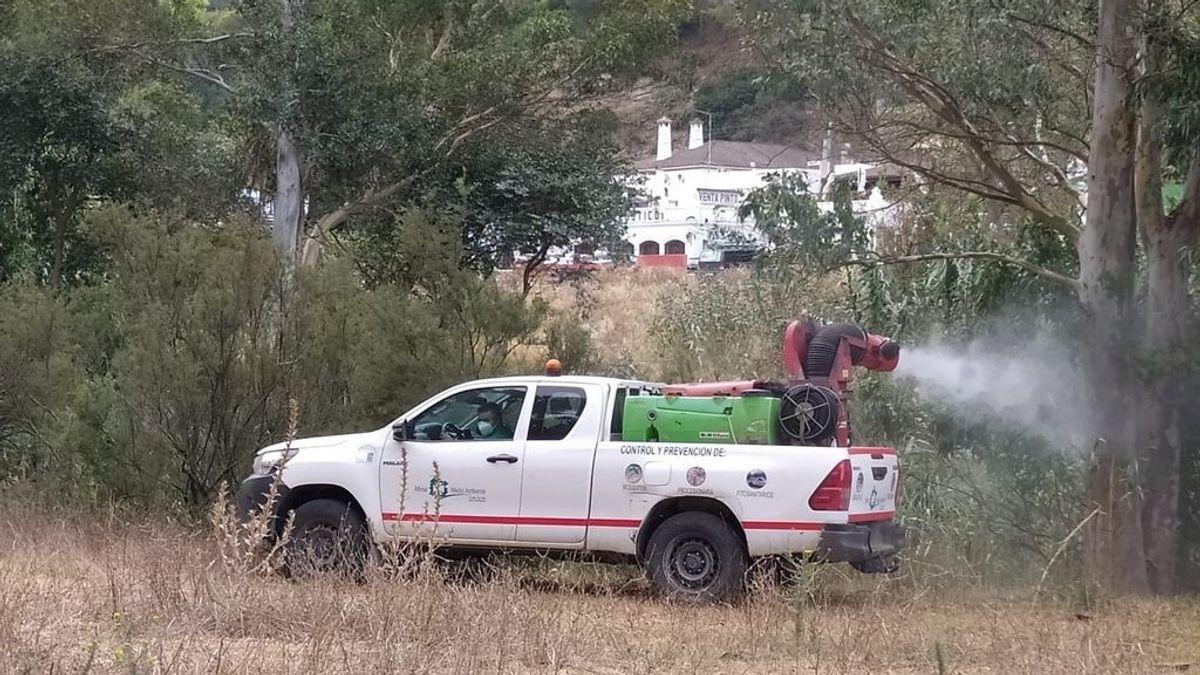 Un vecino de Vejer, quinto fallecido por el virus del Nilo en Andalucía