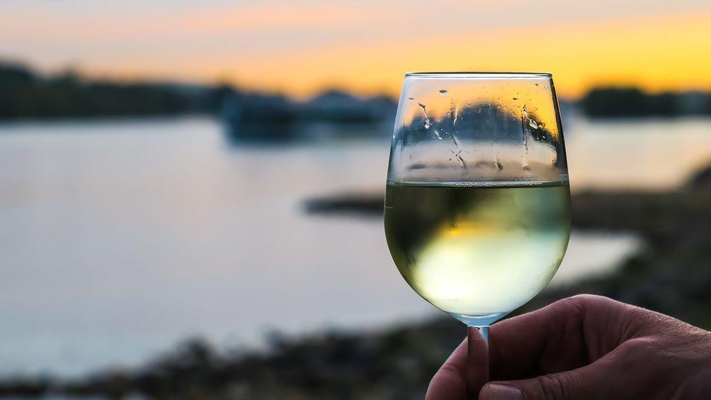 Vino blanco: el vino del momento