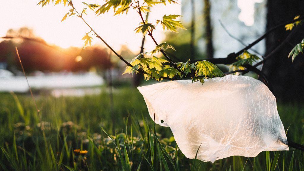 La clasificación del tipo de plástico determina su reciclaje.