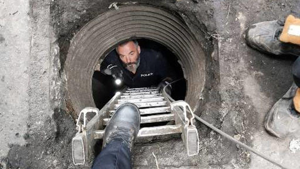 La Guardia Civil descubre en Reino Unido cuatro búnkeres subterráneos para el cultivo de marihuana