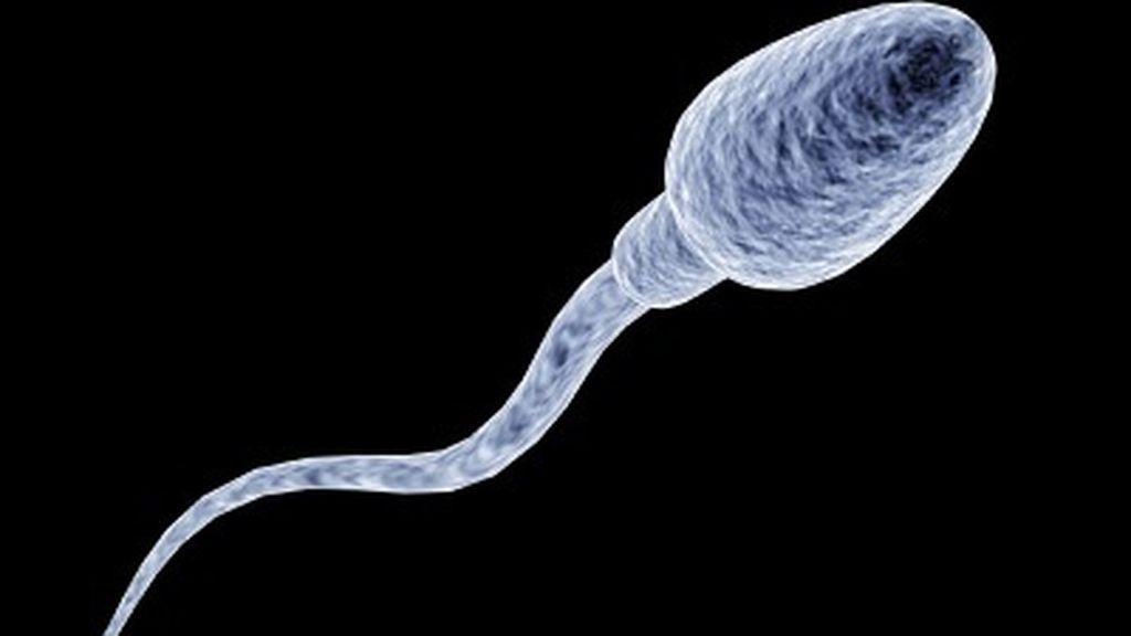 Un estudio alerta de que el Covid-19 puede favorecer la fragmentación del ADN de los espermatozoides