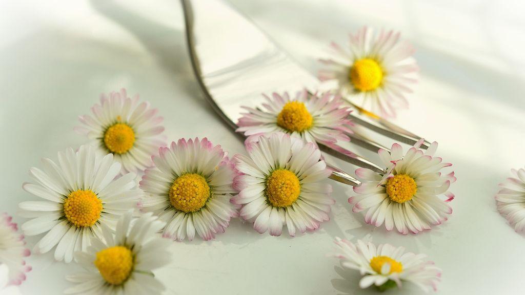 Cómo cocinar con flores comestibles y sorprender a tus invitados