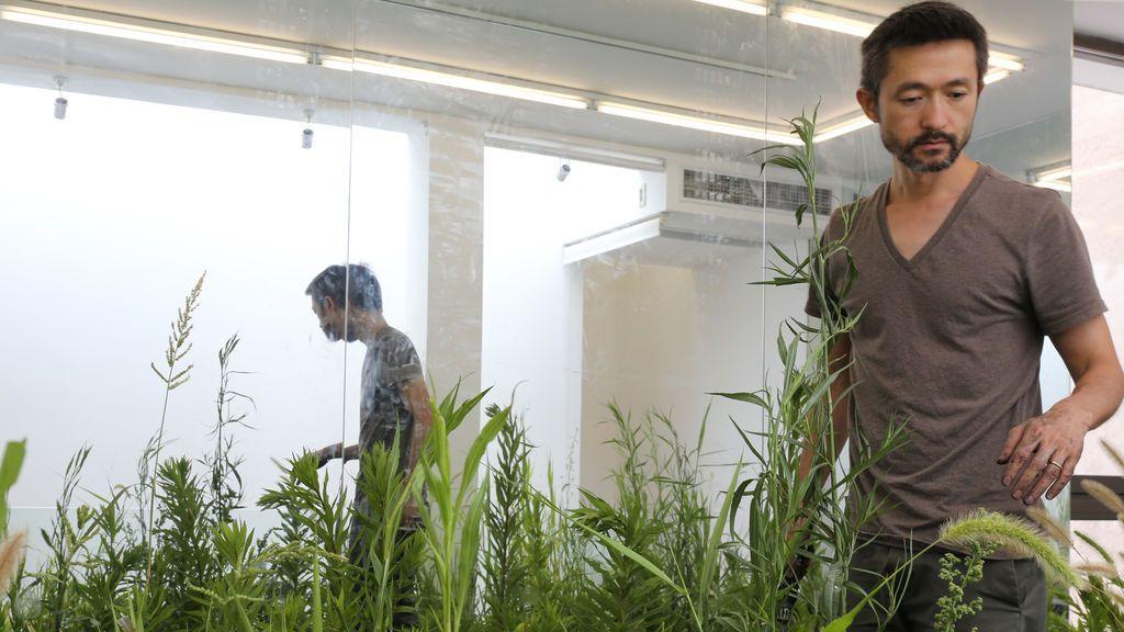 Zheng Bo, el artista que te enseña a tener sexo con plantas en Berlín
