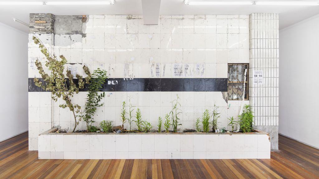 """""""Jardín"""", una Instalacion de Zheng Bo de 2015."""