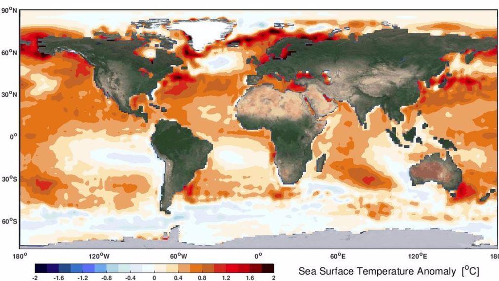 El calentamiento del océano extiende los rigores del clima tropical: California y Australia ya lo saben