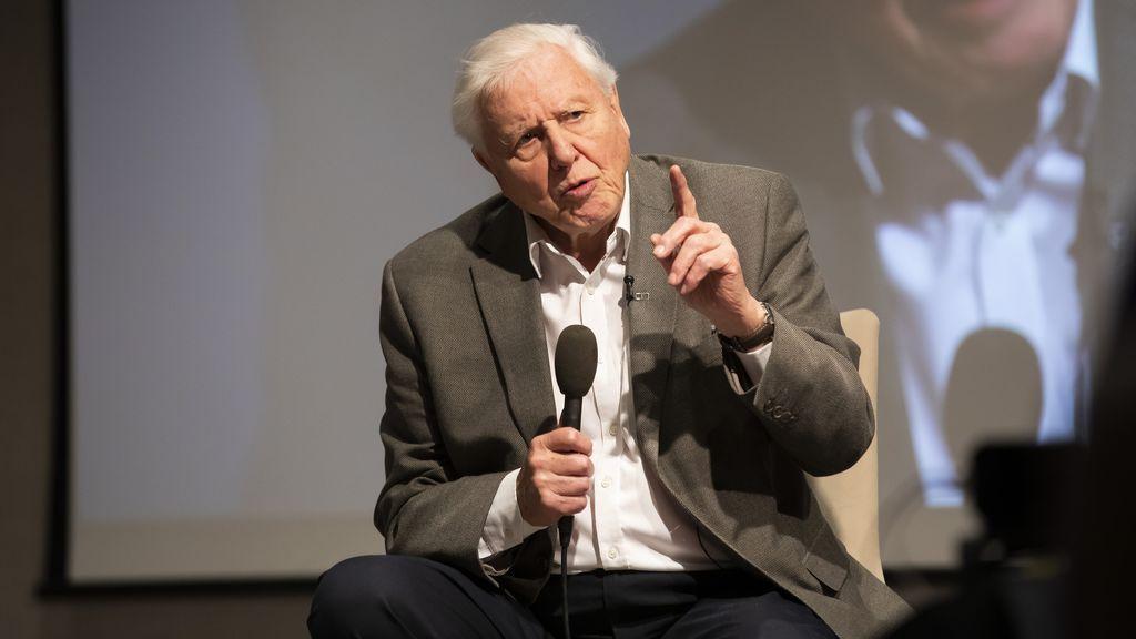 Sir David Attenborough seguirá divulgando en la red