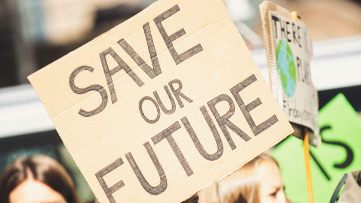 Carrera en el cuidado del medio ambiente: profesiones que ayudan a salvar la Tierra