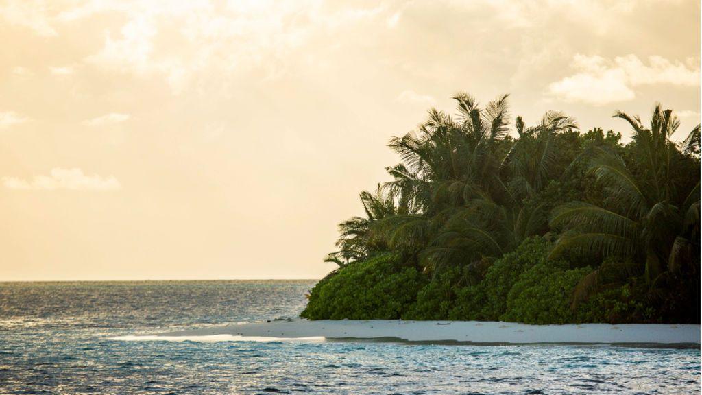 Se busca un librero que quiera pasar seis meses en Maldivas: un trabajo de ensueño aunque mal pagado