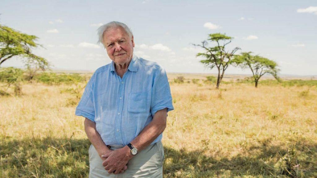 David Attenborough bate un récord en Instagram y hace un llamamiento para proteger el planeta