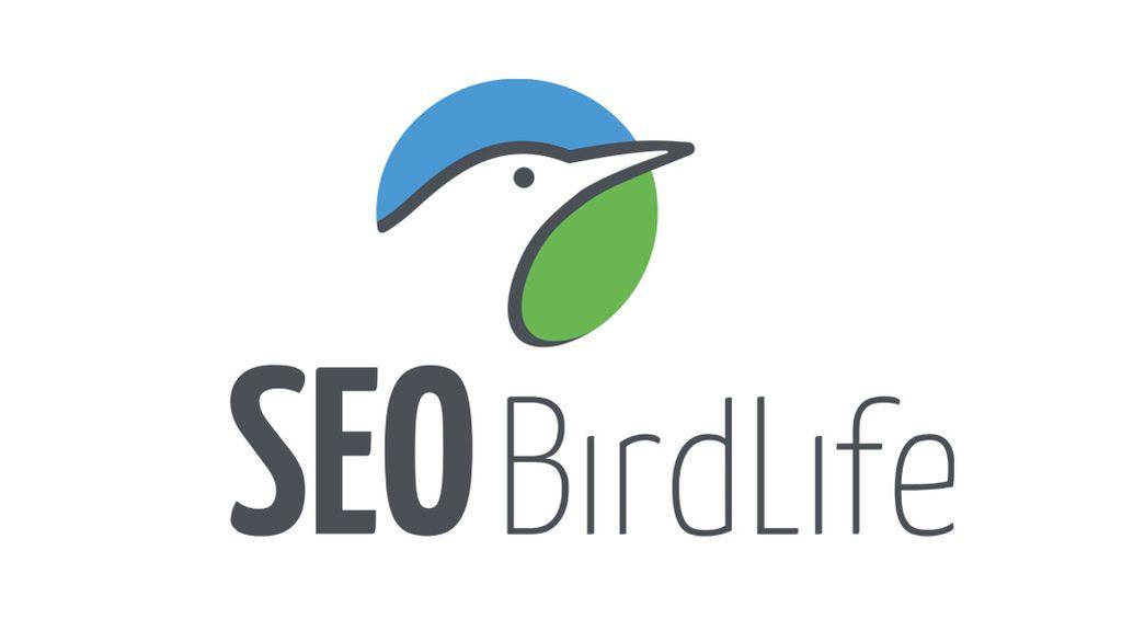logo Seo 1024x576