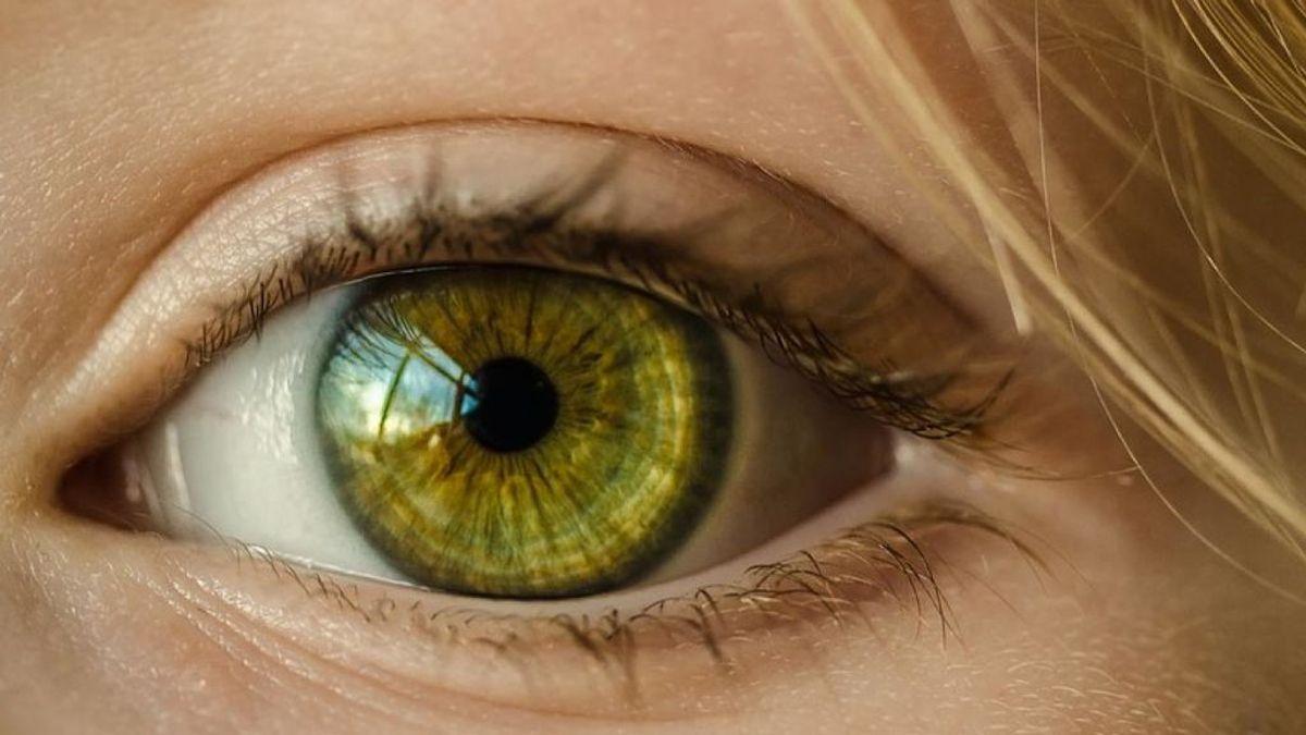 Parásitos que pueden entrar por nuestros ojos