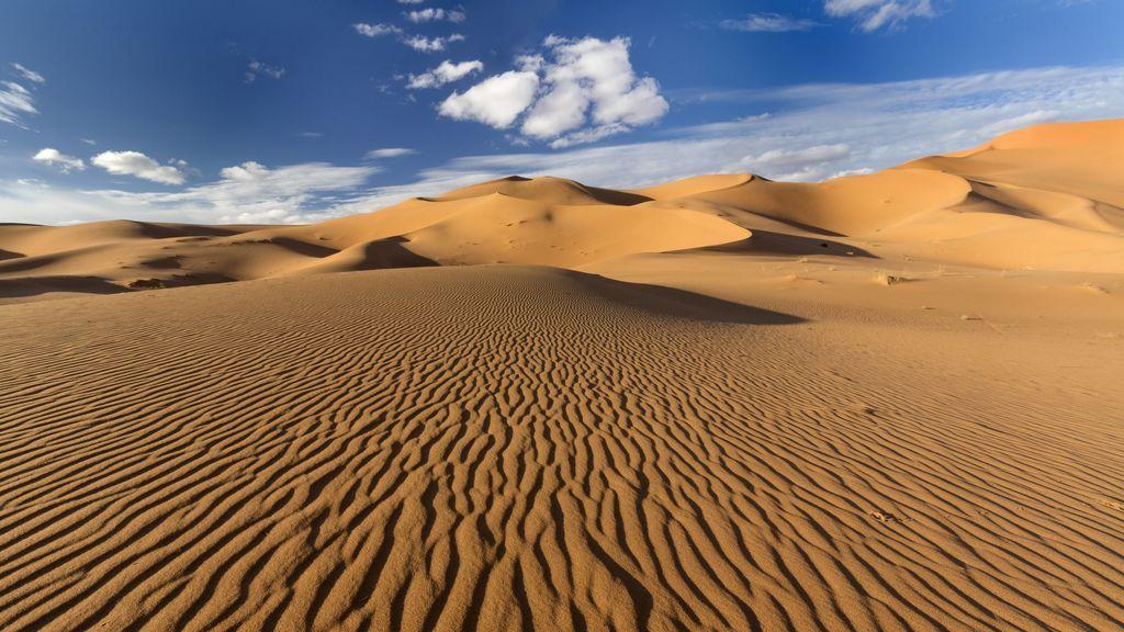 ¿Es cierto que el Sáhara podría volver a ser verde?