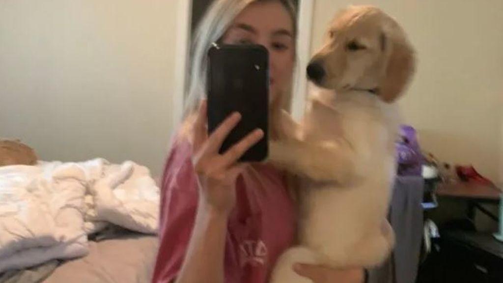 Porter, el perrito que se ha vuelto viral por tener un  trasero muy humano