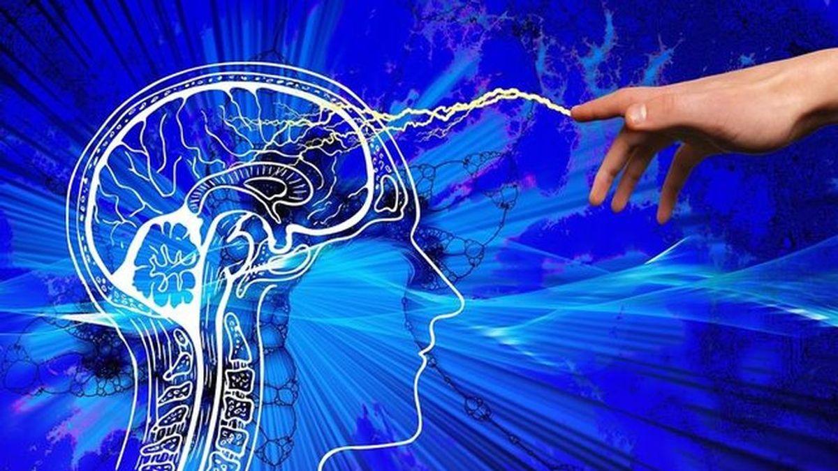 La ansiedad y al depresión no solo está en tu cabeza: las bacterias intestinales resultan claves