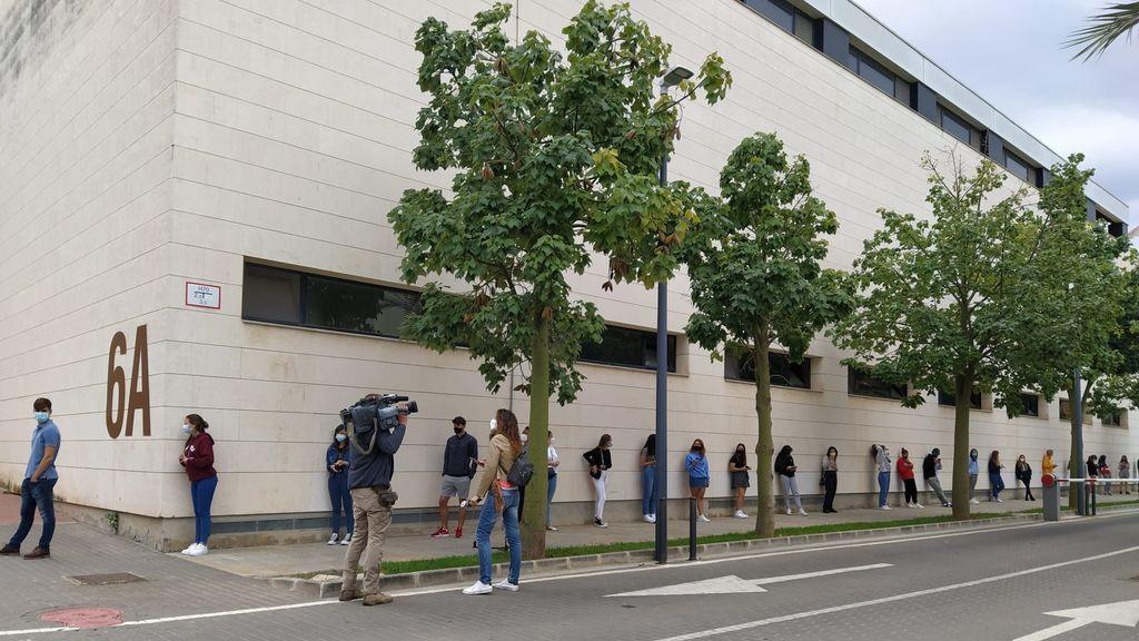 Brote coronavirus Universitat Politècnica Valencia