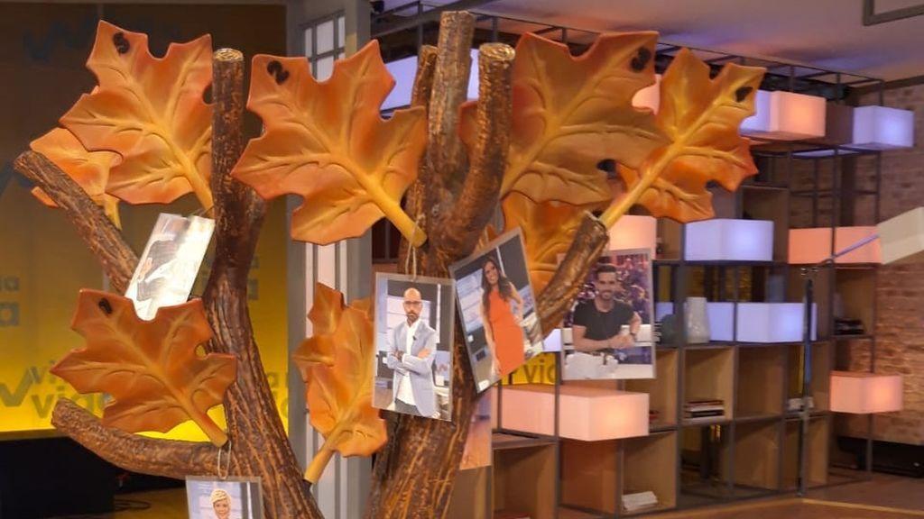 """Participa en nuestro concurso """"El árbol de otoño de Viva la vida"""""""