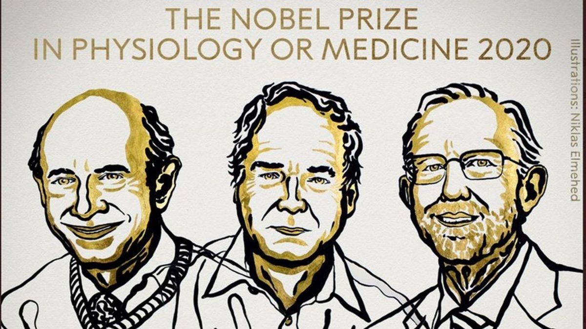 El Nobel de Medicina, para los descubridores del virus de la hepatitis C