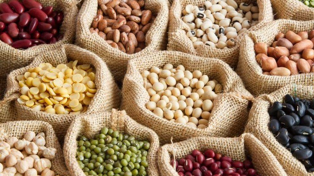 Proteínas vegetales: propiedades y diferencia con la proteína animal