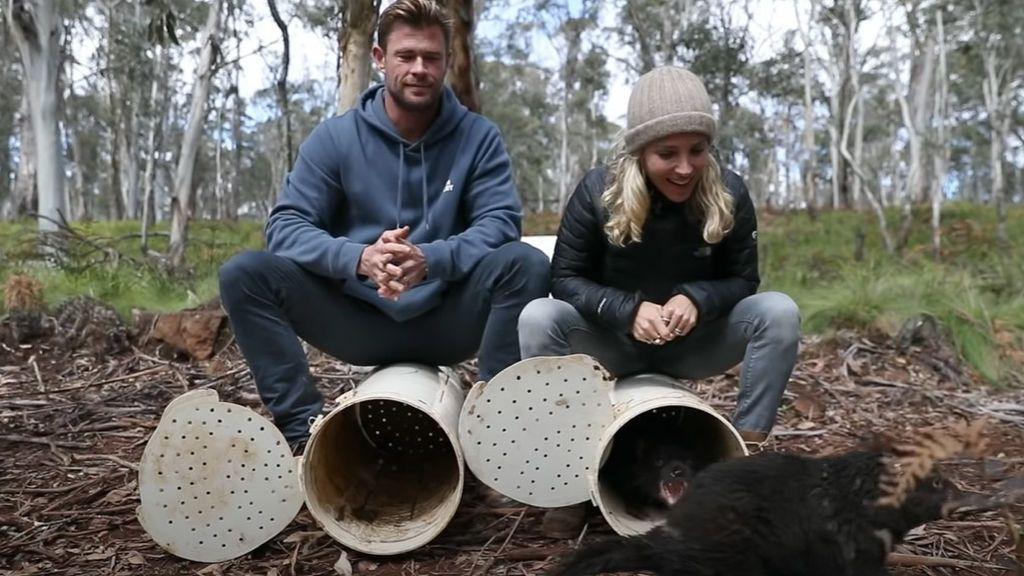 Elsa Pataky y Chris Hemsworth liberan 11 ejemplares del demonio de Tasmania
