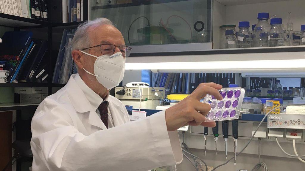"""Luis Enjuanes: """"Los anticuerpos monoclonales son una de las tres estrategias principales frente al SARS-CoV-2"""""""