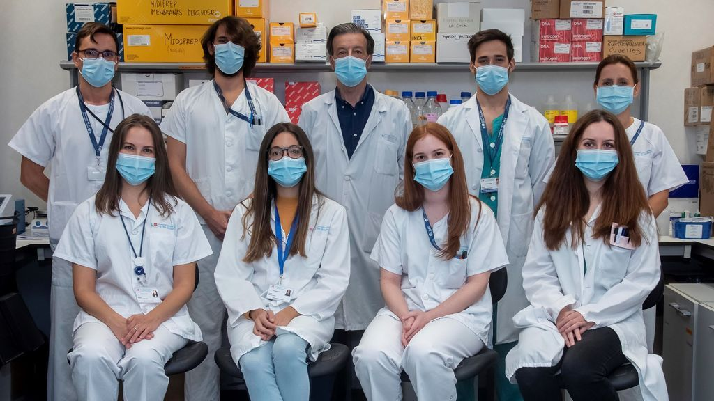 La inmunología sintética, nueva arma contra la covid: fabricar anticuerpos eficaces frente a este y otros coronavirus