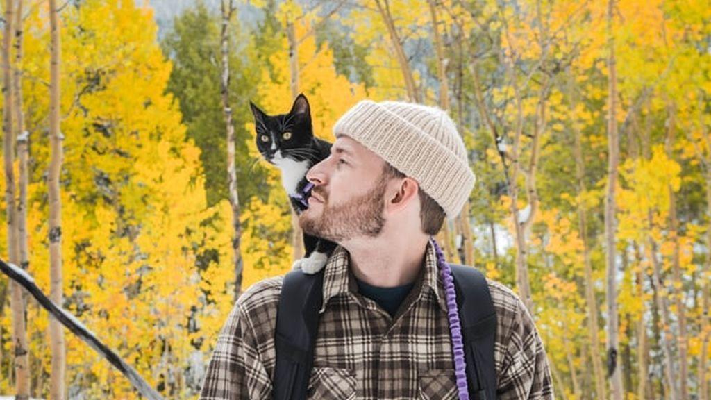¿Quieres llevarte mejor con tu gato? Unos psicólogos han descubierto el truco definitivo