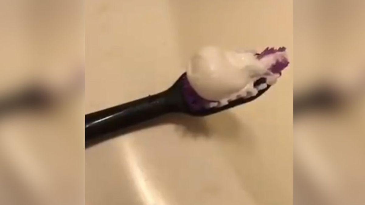 Miles de usuarios, emocionados con la historia de amor... ¡entre un cepillo y una pasta de dientes!