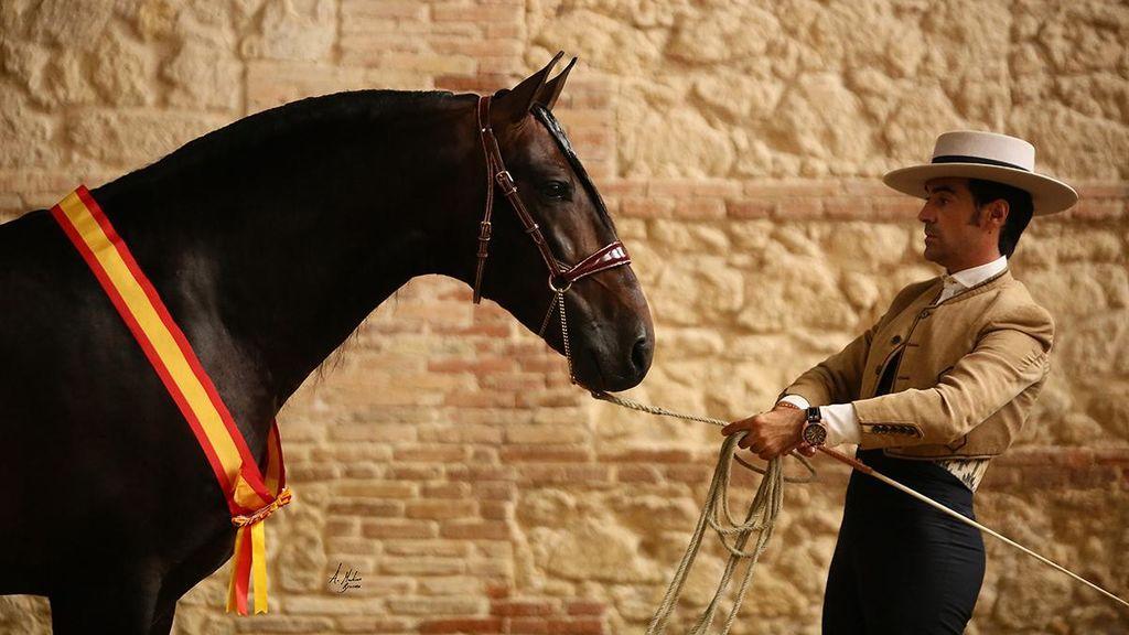 Luto en el mundo del caballo por la repentina muerte de Rubén Arrabé, a los 31 años, durante el Salón de Sevilla
