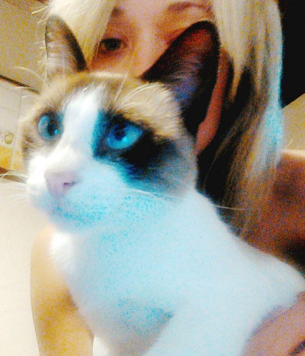 Mayka y su gato