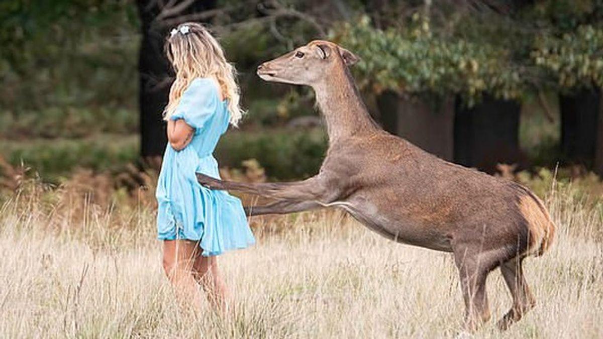 """""""We are not Bambi"""": la policía difunde la foto de un supuesto ataque de un ciervo salvaje durante un 'selfie'"""