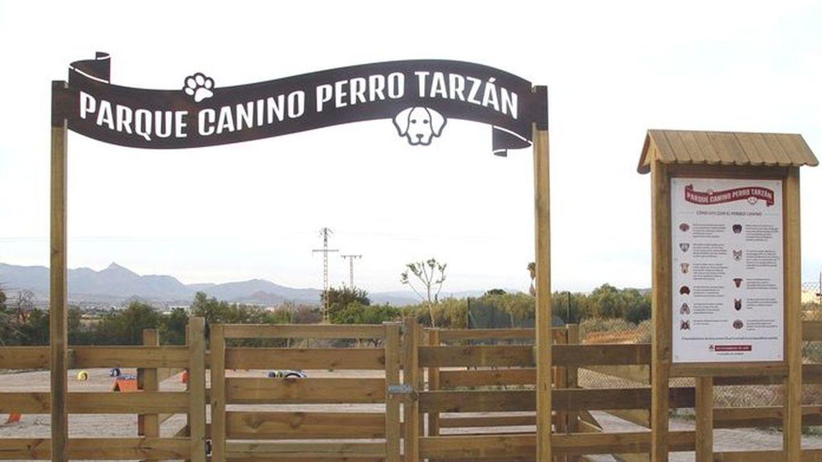 Tarzán, el perro de Aspe que tiene un parque con su nombre y cautivó al tenor Alfredo Kraus