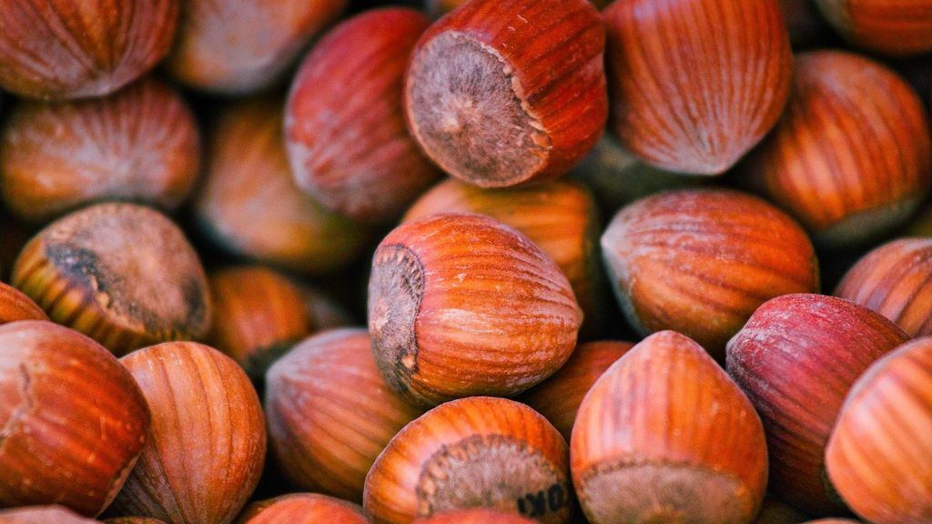 Alimentos típicos del otoño