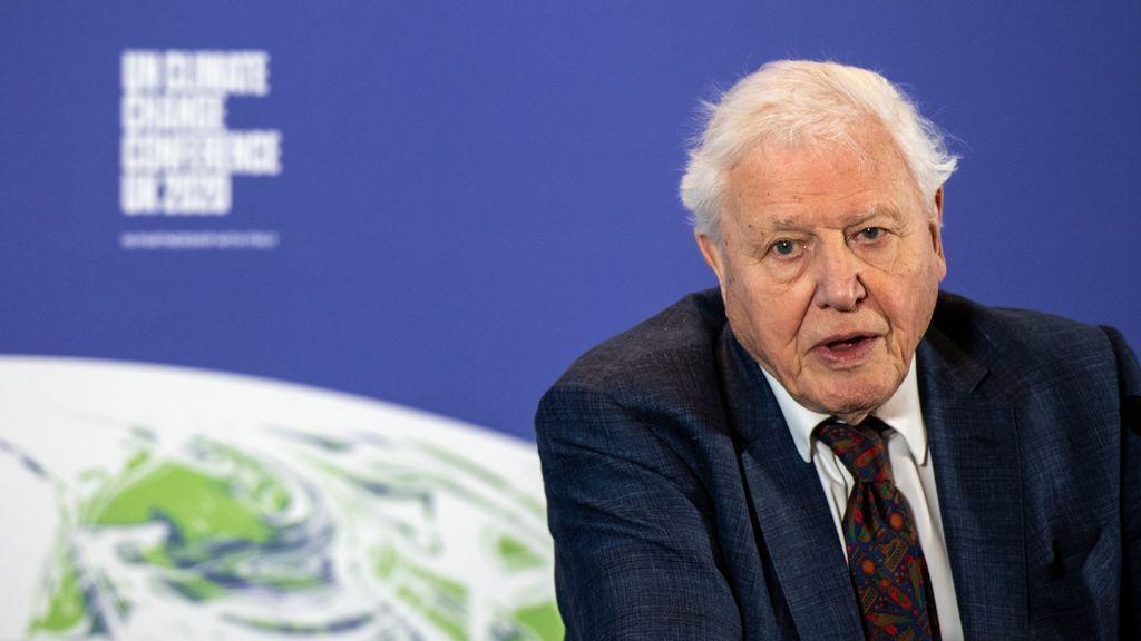 Instagram, ¿solo para milennials? Sir David Attenborough, el más rápido en conseguir 1 millón de seguidores