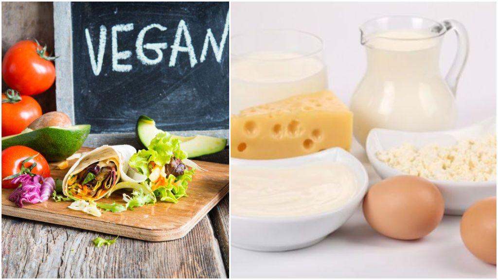 Principales diferencias entre vegano y vegetariano
