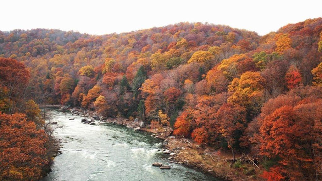 El lugar con la temporada de follaje de otoño más larga del mundo