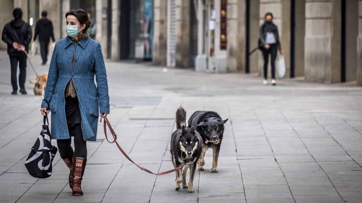¿Puedo pasear al perro durante un toque de queda?