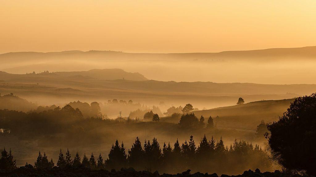 Por qué se forma la niebla