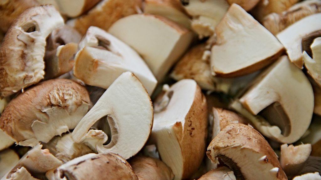 mushrooms-3209263_1280
